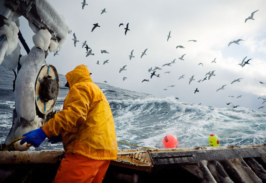 Fishing photography corey arnold cogtography for Bering sea fishing