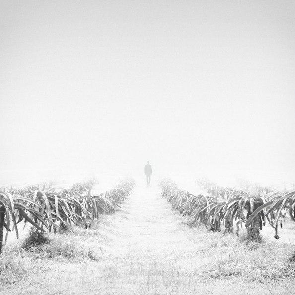 minimalist-black-white-photography-hossein-zare-5